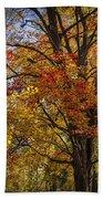 Colorful Autumn Tree In Southwest Michigan By Gun Lake Bath Towel