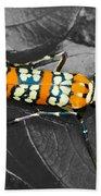 Colorful Insect - Ornate Bella Moth Bath Towel