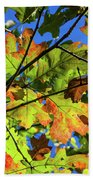Colorful Leaves Bath Towel
