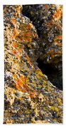 Colorful Lichens Bath Towel