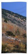 Colorful Orient Canyon - Rio Grande National Forest Bath Towel