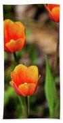 Colorful Tulips Bath Towel