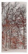 Colorful Winters Day Hand Towel