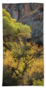 Colors Of Autumn In The Sonoran  Bath Towel