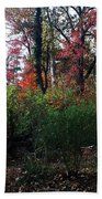 Colors Of The Forest Bath Towel