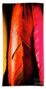 Colourful Feather Art Bath Towel