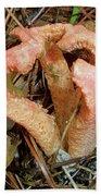 Columned Stinkhorn Mushroom - Outer Banks Nc Bath Towel
