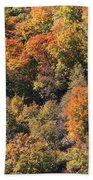 Connecticut Fall Color Bath Towel