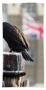 Cormorant Adult Phalacrocorax Carbo Bath Towel