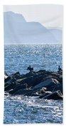 Cormorants At The Cobb - Lyme Regis Bath Towel