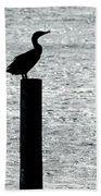 Cormorants Port Jefferson New York Bath Towel