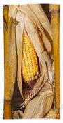 Corn Cobb On Stalk Bath Towel