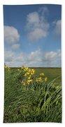 Cornish Daffodil Hedge Bath Towel
