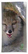 Corsac Fox- Vulpes Corsac 01 Bath Towel