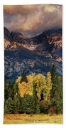 Cottonwoods Fir Trees Fall Color Grand Tetons Nat Bath Towel by Dave Welling