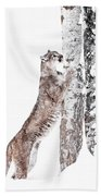 Cougars Tree Bath Towel