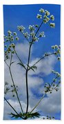 Cow Parsley Blossoms Bath Towel