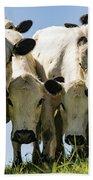 Cows Bath Towel