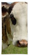 Cows8937 Bath Towel