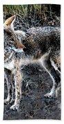 Coyote Waits Bath Towel