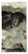 Crab Hiding In A Rock On The Seashore Bath Towel