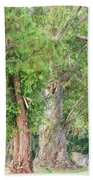 Craggy Tree For Will Bath Towel