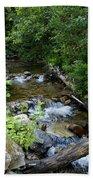 Creek On Mt. Spokane 1 Bath Towel