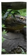 Creeping Komodo Monitor Climbing Under A Fallen Log Hand Towel