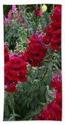 Crimson Snapdragons Bath Towel