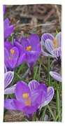 Crocuses 5 Bath Towel