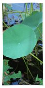 Crossing The Lily Pond Outback Number One Bath Towel