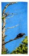 Crow In An Old Tree Bath Towel