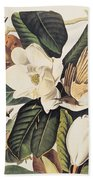 Cuckoo On Magnolia Grandiflora Bath Towel