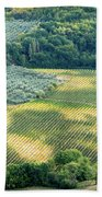 Cultivated Vineyards Tuscany  Italy Bath Towel