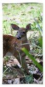 Cumberland Island Deer Bath Towel