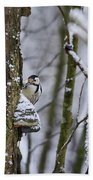 Curious White-backed Woodpecker Bath Towel