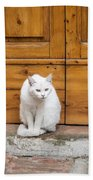 Curious White Cat  Bath Towel