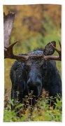 Custer In Autumn Bath Towel