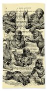 Baby Monkeys Playing Black And White Antique Illustration Hand Towel