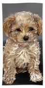 Cute Dog  Bath Towel