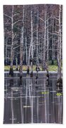Cypress Swamp Bath Towel