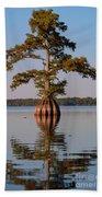 Cypress Tree On Reelfoot Lake Bath Towel