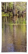 Cypress Trees Along The Hillsborough River Bath Towel