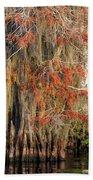 Cypress Winter Colors Bath Towel