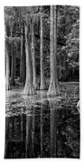 Cypresses In Tallahassee Black And White Bath Towel