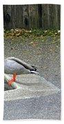 D-a0048 Mallard Ducks In Our Yard Bath Towel