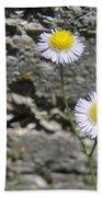 Daisy Fleabane Flowers Bath Towel