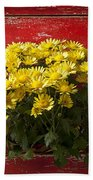 Daisy Plant In Drawers Hand Towel