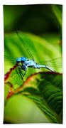 Damselfly Bath Towel