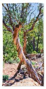 Dancing Trees Bath Towel
